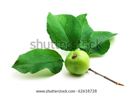 apple with leaf  isolated on white background