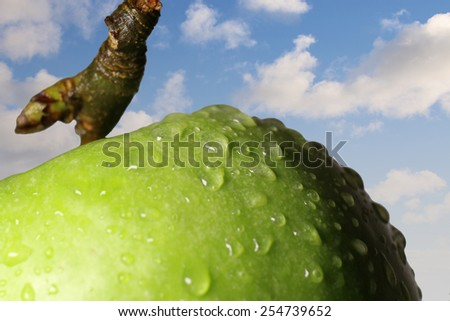 Apple with water drops on a background of clouds. - stock photo