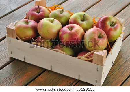Apples - stock photo