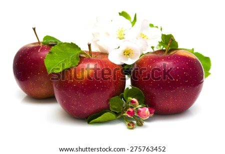 Apples and apple blossom isolated on white background - stock photo
