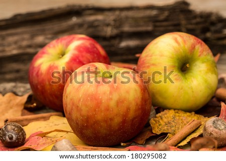 Apples and Fall leaves in Autumn close up - stock photo