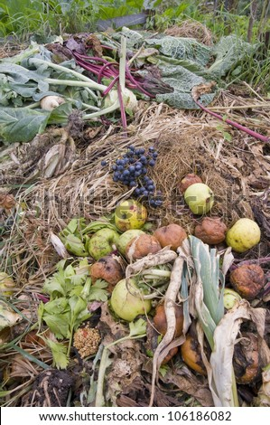 Apples,grapes and different vegetables on a compost heap - stock photo