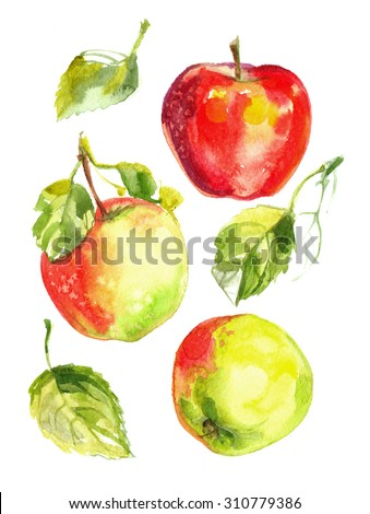 Apples painted with watercolors on white paper. Red apple, green apple, leaf, half an apple - stock photo