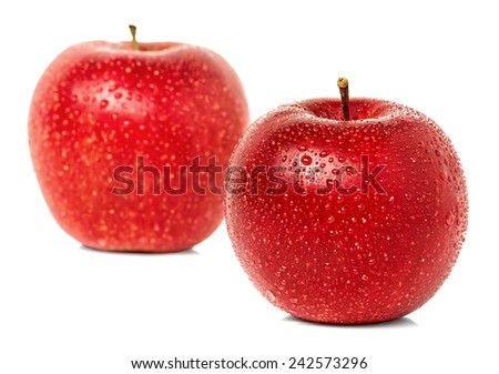 Apples with water drops isolated - stock photo