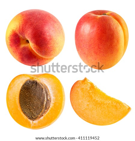 Apricot fruits collection isolated Clipping Path - stock photo