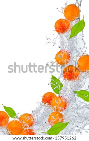 Apricot with water splash over white  - stock photo