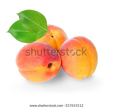 Apricots isolated on a white background. - stock photo
