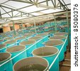 aquaculture water system - stock photo