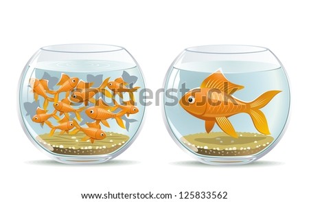 Aquarium comparison. Illustration of the reaction of different participants in the same conditions. - stock photo
