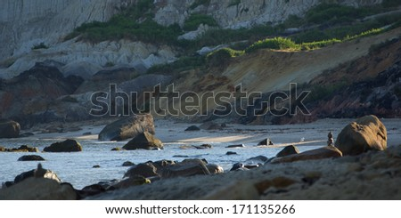 Aquinnah Beach at Martha's Vineyard - stock photo