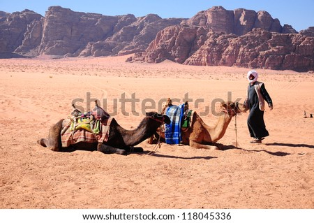 Arab man with camels on desert in middle east - stock photo