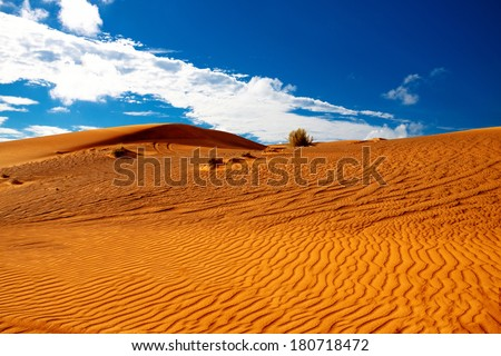 Arabian desert under cloudy sky - stock photo
