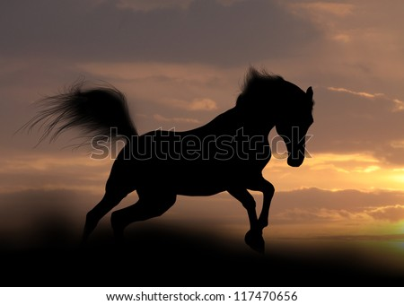 arabian stallion silhouette - stock photo