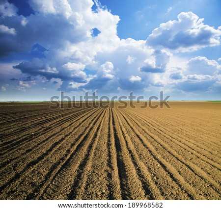 Arable land over dramatic blue sky