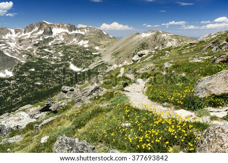 Arapaho Glacier Trail Crosses the Continental Divide High in the Colorado Rocky Mountains with Summer Wildflowers Blooming on the Tundra - stock photo