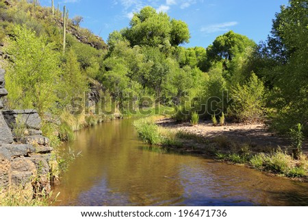 Aravaipa Creek is a stunningly beautiful destination in southeast Arizona.