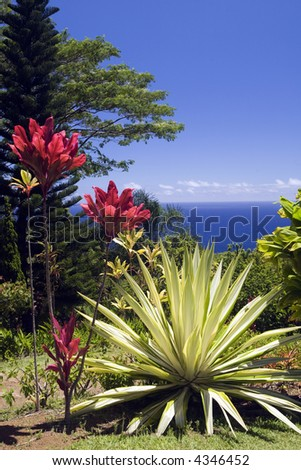arboretum and botanical garden on the Hana Highway, Maui, Hawaii overlooking the Pacific Ocean