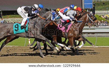 "ARCADIA, CA - DEC 26: The field storms to the finish in the 1st race of the season at historic Santa Anita Park on Dec 26, 2012 in Arcadia, CA. Joel Rosario (red cap) and ""Got Even"" finish 2nd. - stock photo"