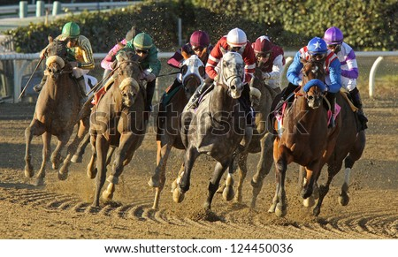 """ARCADIA, CA - JAN 12: Hall of Fame Jockey Mike Smith (blue cap with star) pilots """"Fed Biz"""" to victory in The San Fernando Stakes at Santa Anita Park on Jan 12, 2013 in Arcadia, CA. - stock photo"""