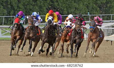 ARCADIA, CA - JAN 1: Horses round the far turn in a claiming race at Santa Anita Park on Jan 1, 2011 in Arcadia, CA. Eventual winner is Summers at Delmar (pink & purple). - stock photo