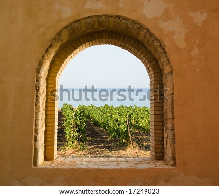 arched window on the vineyard - stock photo