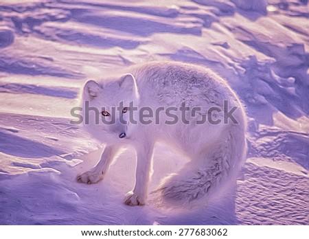Arctic fox on Arctic tundra, photo art - stock photo