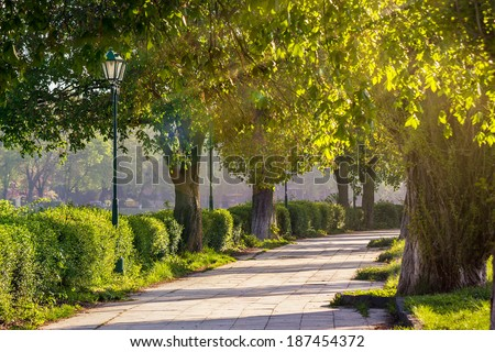 area of �¢??�¢??the old city park with lantern near bench under japanese cherry tree in sun light - stock photo