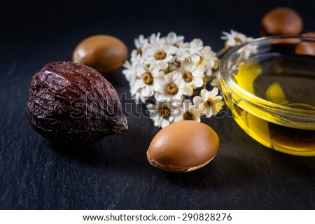 Argan fruits and seed with Argan oil - stock photo
