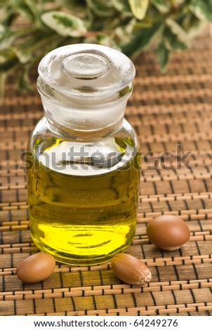 Argan oil and nuts - stock photo