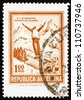 ARGENTINA - CIRCA 1971: a stamp printed in the Argentina shows Ski Jumper, circa 1971 - stock photo