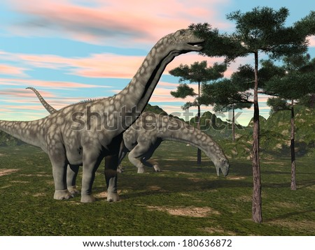 Argentinosaurus dinosaur eating at the top of a tree by sunset - stock photo