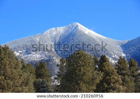 Arizona, United States. Coconino National Forest with mountain range of San Francisco Peaks. Mount Humphreys is the tallest point of Arizona. - stock photo