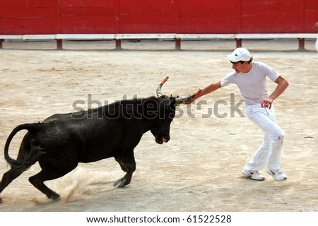 ARLES - JULY 9: Trainees of the school for Raseteur in Arles Thomas Blanc  fights against a Camargue-bull in the arena on July 09, 2010 in Arles, Bouche du Rhone, France