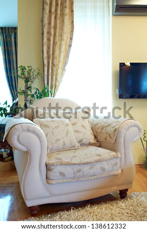 Armchair in  contemporary living room