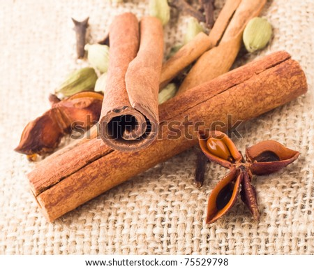 aromatic composition with cinnamon and star-anise - stock photo