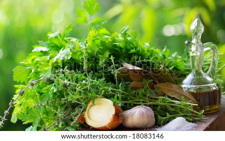 Aromatic Herbs and condiments. - stock photo