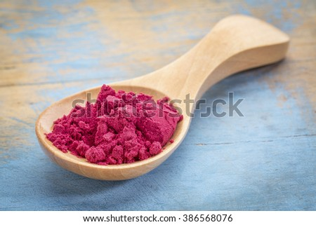 aronia berry powder on a wooden spoon against blue painted grunge wood - stock photo