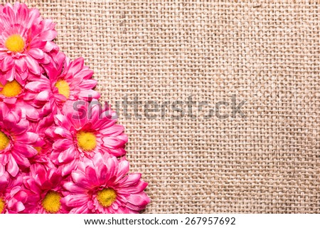 Arrangement of artificial, pink, daisy flowers, located on burlap background, useful as invitations card, wedding invitation and greetings card - stock photo