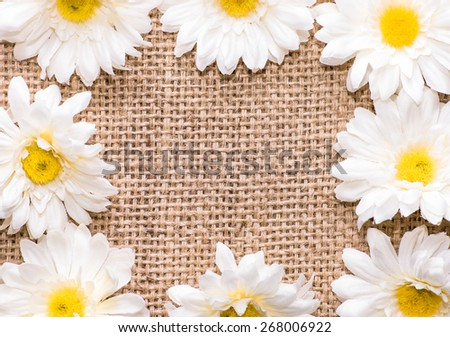 Arrangement of artificial, white daisy flowers, located on burlap background, useful as invitation card, wedding invitation and greetings card - stock photo