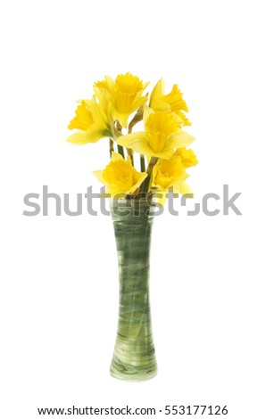 Arrangement of daffodils in a vase isolated against white