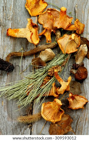 Arrangement of Dried Forest Chanterelles, Porcini and Boletus Mushrooms with Dry Grass, Leafs and Fir Stems on Rustic Wooden background - stock photo
