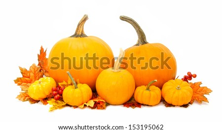 Arrangement of pumpkins with autumn leaves over white - stock photo