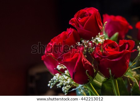 Arrangement of red roses with dark background - stock photo