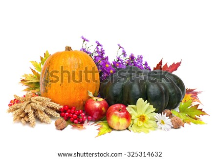 Arrangement of thanksgiving.  Pumpkins, apples, wheat, walnuts, of maple leafs  and flowers.  - stock photo
