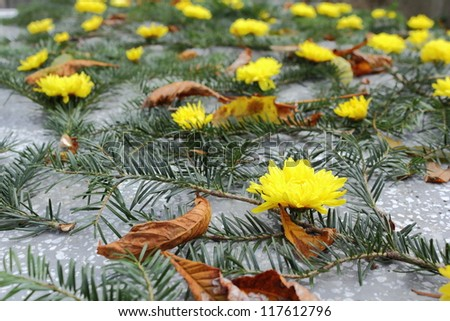 arrangement with spruce and yellow chrysanthemum on a grave - stock photo