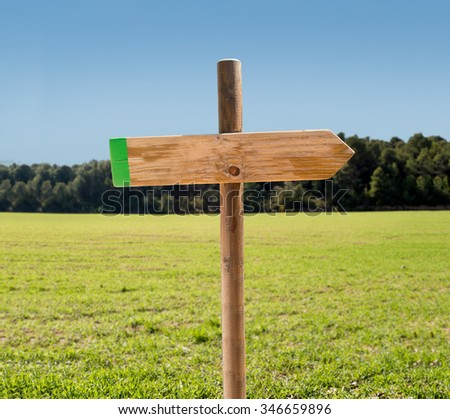 arrow on signpost indicating the correct path in blank on nature background - stock photo