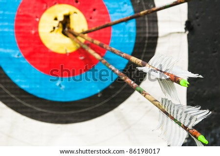arrows in the center of the target - stock photo