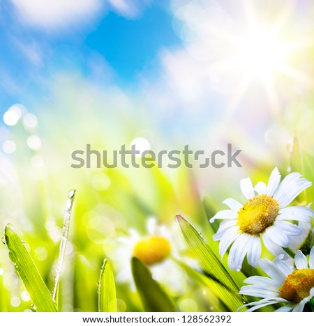 art abstract background spring summer flower in grass with water drops on sun sky - stock photo
