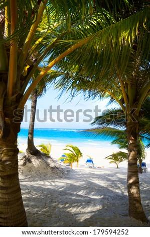 Art beautiful caribbean tropical sea beach - stock photo
