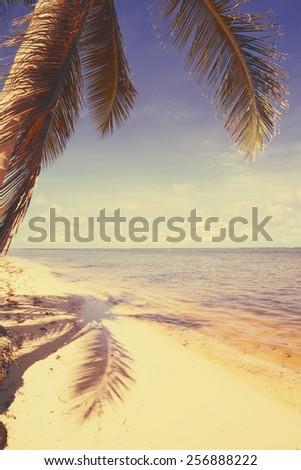 Art  beautiful retro seaside view  background - stock photo
